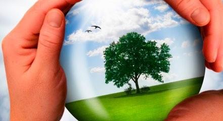 Экономическая роль страховой отрасли и неиспользованный потенциал